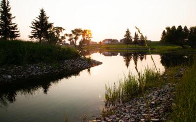 Call for Public Input – Environmental Strategic Plan