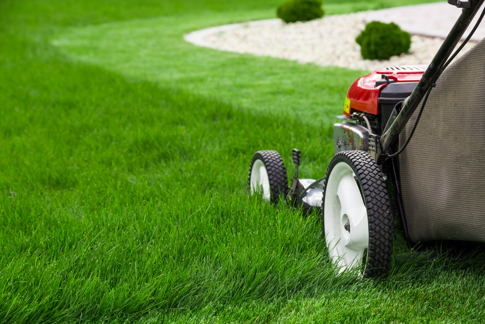 Bylaw 1034-17 and Lawn Care